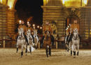 Horse Show In Buda Castle gallery